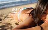 Calendar 2015 HD wallpapers #14