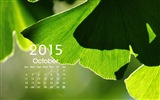 Calendar 2015 HD wallpapers #15