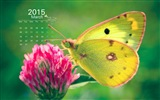 March 2015 Calendar wallpaper (1)