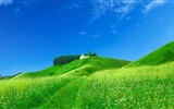 Beautiful color, natural scenery HD wallpapers #2