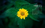 April 2015 Kalender Wallpaper (2) #7