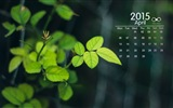 April 2015 Kalender Wallpaper (2) #14