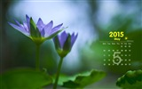May 2015 calendar wallpaper (1)
